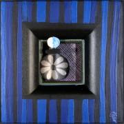 Omaggio a Morandi n.10 - Legno a più spessori, tempere, acrilici, colori a cera- 28x28 cm- 1991